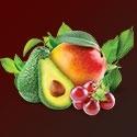 Ovocná řada